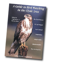 A-guide-to-birdwatching-in-the-Clyde-area