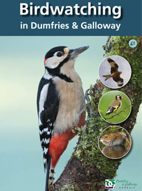 birdwatching-in-dumfries-and-galloway-4th-edition-guide