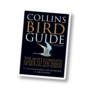 Collins Bird Guide*